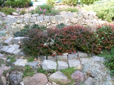 Ogród skalny na granitowym tarasie